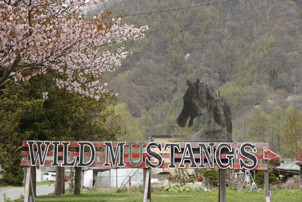 WILD MUSTANG'S(ワイルドムスタングス)