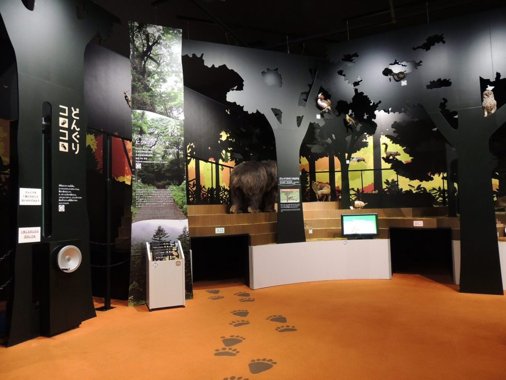 北海道博物館