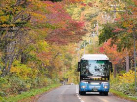 定山渓温泉街(かっぱバス)