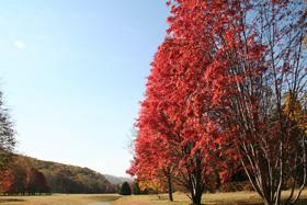 北海道立真駒内公園
