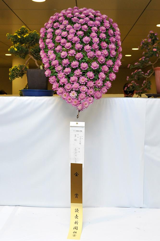2011さっぽろ菊まつり