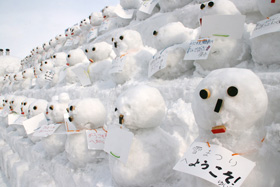 第61回さっぽろ雪まつり(つどーむ会場)