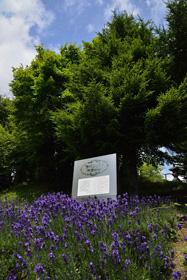 ラベンダー発祥の地 記念碑