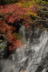 ラルマナイ自然公園(恵庭市)