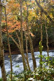 白扇の滝(恵庭市)