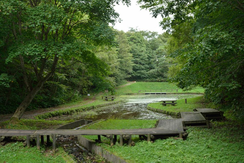 レクリエーションの森(北広島市)