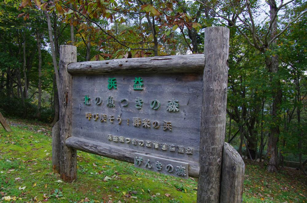 千本なら(石狩市)